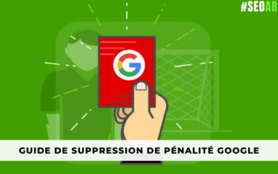 Guide Expert : Suppression de pénalité google