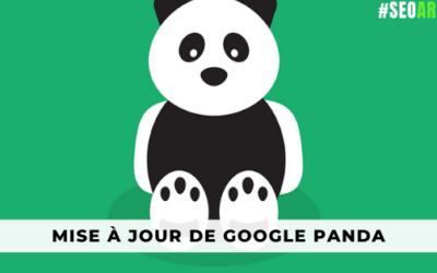 Un guide complet pour la mise à jour de Google Panda