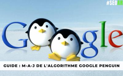 Guide Complet : M-A-J de l'algorithme Google Penguin