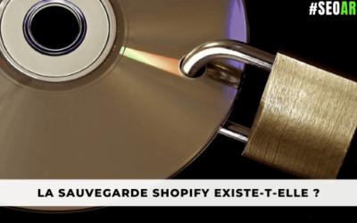 La sauvegarde Shopify existe-t-elle ?